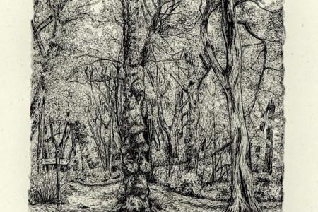 Lower Marvel Wood by Jon Halls, £100