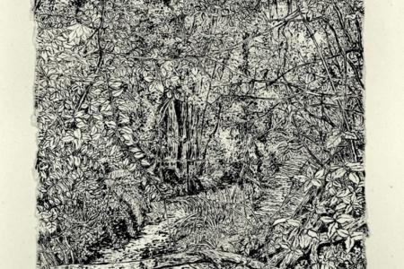 Crofton Woods by Jon Halls, £100