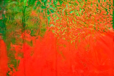 Amazonia by Maria X. Fernandez Iglesias, € 3,000
